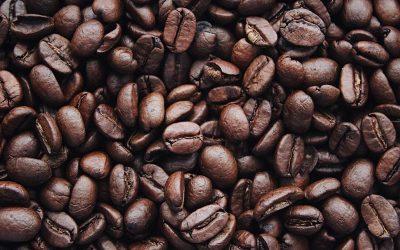 Koffiebreak tijdens het motorrijden: zet gemakkelijk je eigen bakkie
